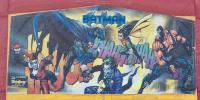 Batman & Robin Panel