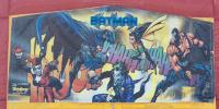 Batman & Robin Panel