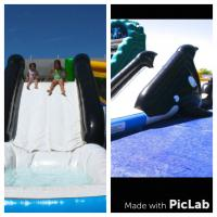 Shamu Water Slide