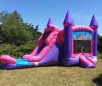 Pink Princess Single Lane Wet Slide